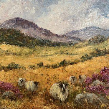 Mountain Sheep by Irene Woods @CastlewoodDingle