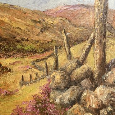 The Mountain Fence by Irene Woods @Castlewood Dingle